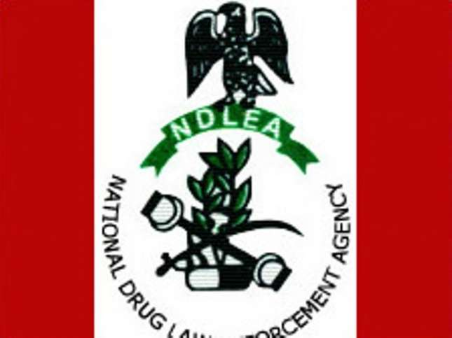 NDLEA nabs 57 suspected drug peddlers in Oyo