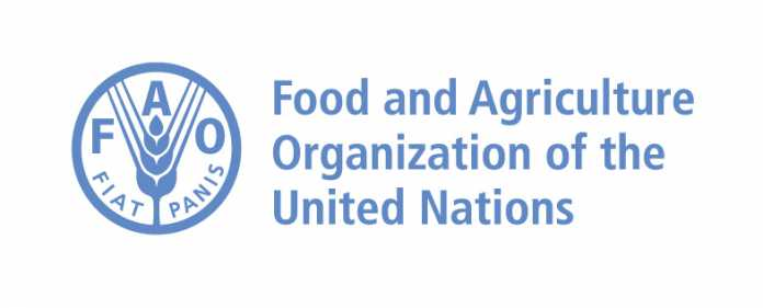 FAO moves to transform agri-food system