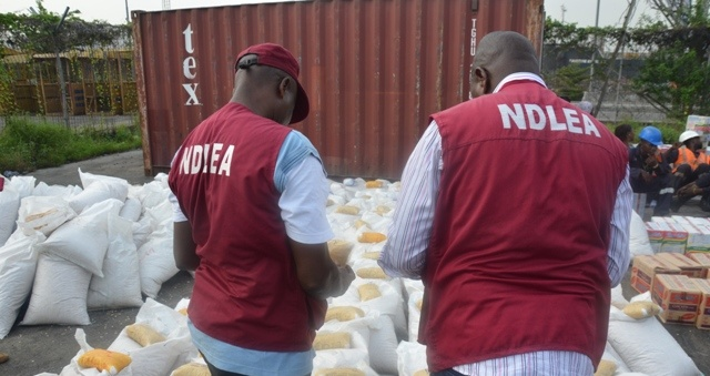 NDLEA arrests 42 suspected drug offenders in Oyo