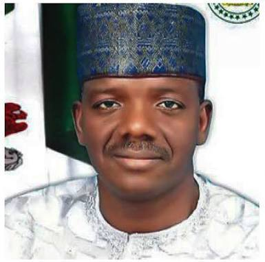 Gov. Matawalle says 31 illegal miners deported from Zamfara