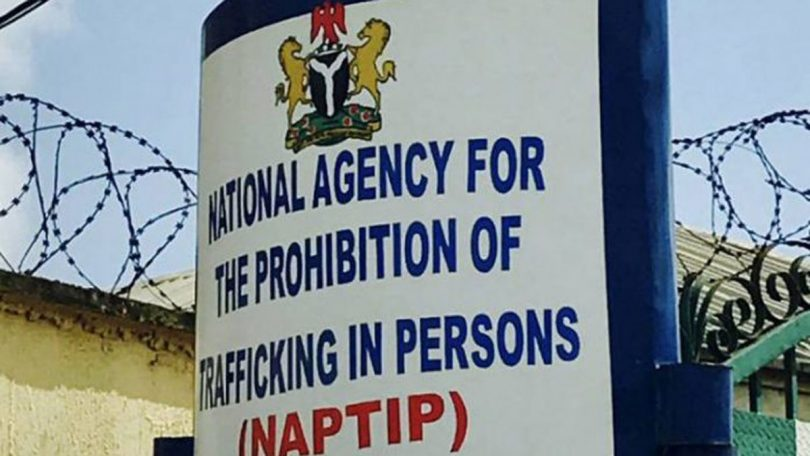 NAPTIP rescues 152 victims of human trafficking in Osogbo