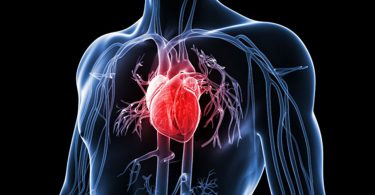In the Lighter Mood: Protect your Heart...!
