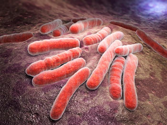 Tuberculosis and HIV co-infection on the increase in Nigeria – NGO