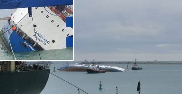 Horror in Romanian port: Ship capsizes with 14,600 sheep on livestock carrier
