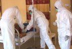 Lassa fever: 4 suspected cases recorded in Adamawa