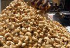 PRODUCE: Nigeria export market truly unattractive to investors- Expert