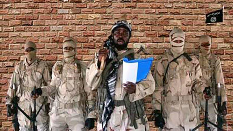 BOKO HARAM: Jihadists kill 30 in Borno, abduct women and children