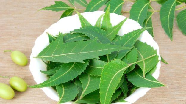 "COVID-19: Rush for ""Dogoyaro"", ""Tagairi"" on increase in Lagos — Herbs Sellers"