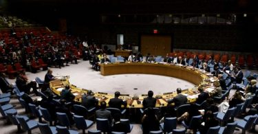 Africa fails litmus test as UN elects 4 new Security Council members