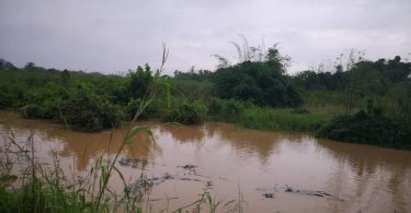 ANAMBRA: Flood displaces 1,000 persons, submerges farmlands