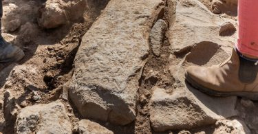 Israel discovers 1,700 year old boundary stone with Greek inscription