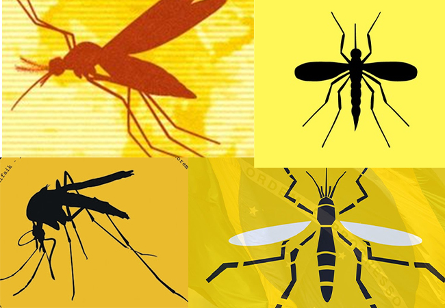 Yellow Fever: Enugu State govt. tasks residents on cleanliness to check Yellow Fever