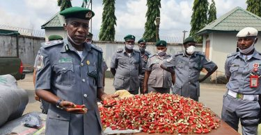 OWERRI: Zone C Customs Seizes 5,200 live ammunition, N386m contraband