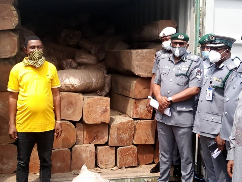 NCS detains agent, 'shipper' over attempt to export N952m pangolin scales, elephant tusks