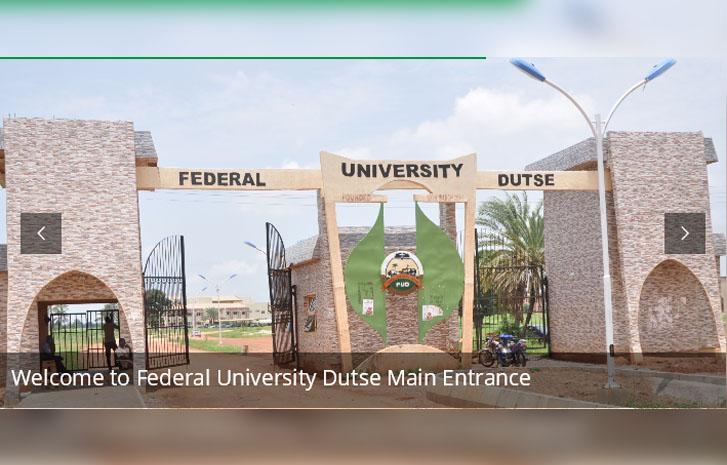 Suicide: Federal University Dutse begins investigation