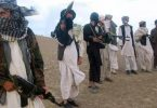 Taliban kills 11 govt forces in overnight attacks in E. Afghanistan