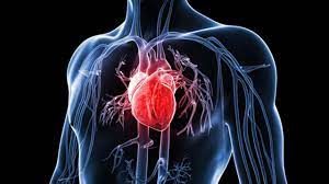LIGHTER MOOD: How to Prevent Hearts disease!